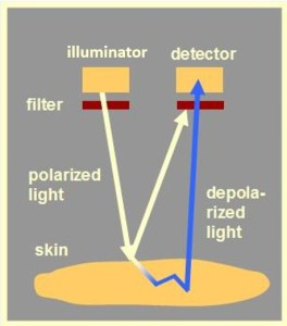 polarizations camera